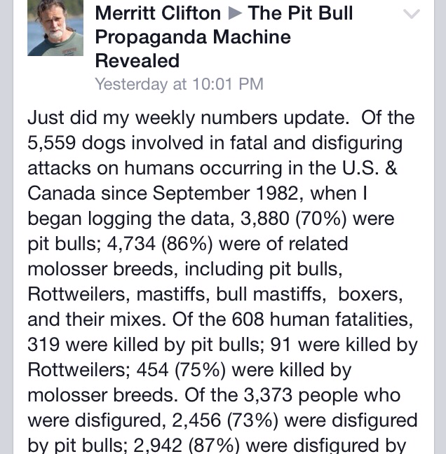 Official Numbers Of Dog Attackes By Breed